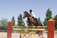 A horse clearing a jump. Royalty Free Stock Images