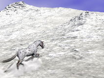 Horse climbing the mountain - 3D render. Beautiful leopard appy horse climbing on the snow to the top of the mountain Royalty Free Stock Photography