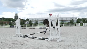The horse is clings the barrier during the jump stock video footage