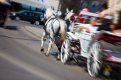 Horse with coach on city street Royalty Free Stock Photos