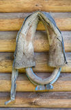 Horse collar on wooden wall Stock Images