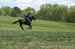 Horse Competition. A horse and rider competing in an event royalty free stock photos