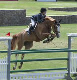 Girl flys on her Horse Over a Jump Stock Images
