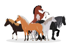 Horse Conceptual Flat Style Vector Web Banner. Horse conceptual web banner. Flat style vector. Group of different horses breeds, variety colors and sizes Royalty Free Stock Images
