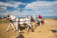 Horse contest with carriage on sunny day at the end line. Horse contest , horses and carriage on sunny day. This is a regional contest in Covasna County Stock Photography