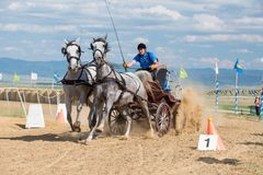Horse contest with carriage on sunny day. Horse contest , horses and carriage on sunny day. This is a regional contest in Covasna County Royalty Free Stock Photography