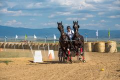 Horse contest with horses and carriage on sunny day. NThis is a regional contest in Covasna County Royalty Free Stock Photos