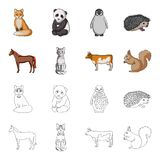 Horse, cow, cat, squirrel and other kinds of animals.Animals set collection icons in cartoon,outline style vector symbol. Stock illustration Stock Photos