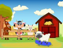 Horse, cow and goat watch sheep on skateboard cartoon. Colourfull Stock Photo
