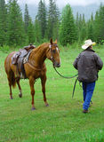 Horse and cowboy. A horse and its cowboy Royalty Free Stock Photography