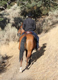 Horse and cowboy riding up a trail. A cowboy riding up a trail with his horse turning around.  When looking closely you will find a interesting expression on Stock Photography