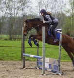 Horse cross country teenage competition jumping tree trunks and jumps over barrels of water and colored bars Royalty Free Stock Photography