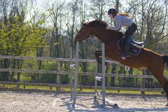 Horse cross country teenage competition jumping tree trunks and jumps over barrels of water and colored bars Royalty Free Stock Image