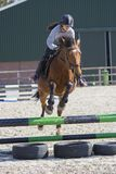 Horse cross country teenage competition jumping tree trunks and jumps over barrels of water and colored bars Stock Photos