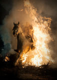 Horse crossing the fire with his rider Royalty Free Stock Photography