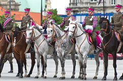 Horse detachment Royalty Free Stock Image