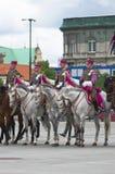 Horse detachment Royalty Free Stock Photo