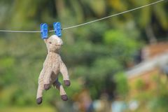 Horse doll hanging on a wire stock photos