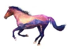 Horse double exposure illustration