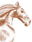 Horse Drawing. Horse profile drawing in brown tones Stock Photography