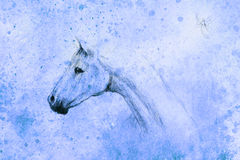 Horse drawing and little fairy on old paper, vintage paper and old structure with color spots. Stock Images