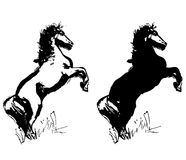 Horse drawings vector Royalty Free Stock Images