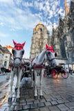 Horse-drawn μεταφορά - Βιέννη, Αυστρία Στοκ εικόνα με δικαίωμα ελεύθερης χρήσης