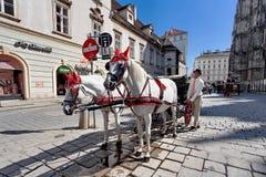 Horse-drawn μεταφορά - Βιέννη, Αυστρία Στοκ φωτογραφίες με δικαίωμα ελεύθερης χρήσης