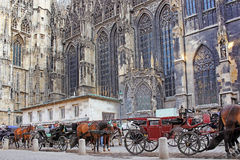 Horse-drawn μεταφορά, κοντά στον καθεδρικό ναό του ST Stephen, Βιέννη Στοκ Φωτογραφίες