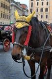 Horse-drawn μεταφορά στη Ρώμη Στοκ φωτογραφίες με δικαίωμα ελεύθερης χρήσης