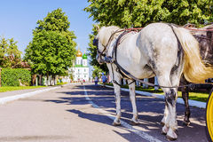 Horse-drawn μεταφορά στις οδούς της παλαιάς ρωσικής πόλης του Κ Στοκ φωτογραφία με δικαίωμα ελεύθερης χρήσης
