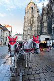 Horse-drawn μεταφορά στον καθεδρικό ναό - Βιέννη, Αυστρία Στοκ εικόνες με δικαίωμα ελεύθερης χρήσης