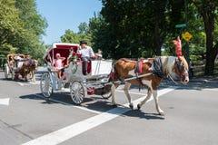 Horse-drawn μεταφορά, NYC Στοκ φωτογραφία με δικαίωμα ελεύθερης χρήσης