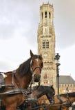 Horse-drawn μεταφορές, Μπρυζ, Βέλγιο Στοκ Εικόνα