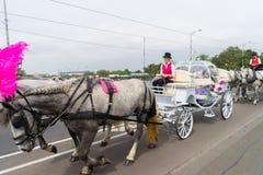Horse-drawn μεταφορές στην οδό στη Μελβούρνη Στοκ Φωτογραφία