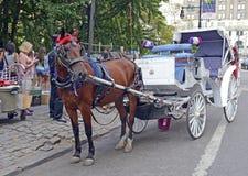 Horse-drawn μεταφορές στην πόλη της Νέας Υόρκης Στοκ Εικόνες