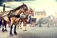 Horse-drawn μεταφορές στο παλαιό τετράγωνο αγοράς Βέλγιο Μπρυζ Στοκ Εικόνες