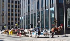 Horse-drawn με λάθη γύροι Caleche για τους τουρίστες στο Μόντρεαλ, Καναδάς Στοκ εικόνες με δικαίωμα ελεύθερης χρήσης