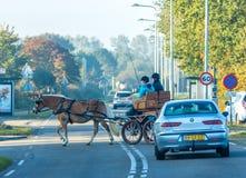 Horse-drawn με λάθη στον πολυάσχολο δρόμο Στοκ Φωτογραφία