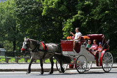 Horse-drawn езды экипажа в Central Park стоковое фото rf