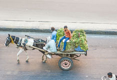 Άνθρωποι σε ένα horse-drawn κάρρο στην Ινδία Στοκ Εικόνες