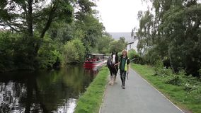 Horse drawn barge canal Llangollen Wales UK with man stock video footage