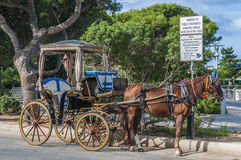 Horse-drawn Buggy in Mdina, Malta Royalty Free Stock Image