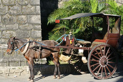 horse drawn calesa in vigan philippines Royalty Free Stock Images