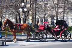 Horse drawn carriage  Royalty Free Stock Images