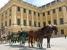 Horse drawn carriage. At Schoenbrunn Palace Royalty Free Stock Photography