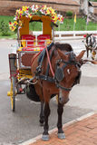 Horse drawn carriage Stock Images