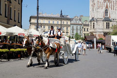 Horse-drawn carriage Stock Images