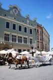 Horse-drawn carriage Stock Photos