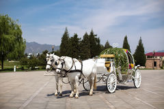 Horse drawn carriage. At wedding Stock Photos